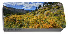 Fall Colors Come To Mt. Charleston Portable Battery Charger