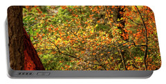 Fall Colors Portable Battery Charger by Sabine Edrissi