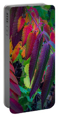 Portable Battery Charger featuring the photograph Fall Feathers by Kendall McKernon
