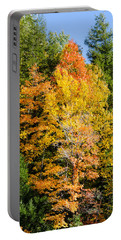 Fall Foliage 2 Portable Battery Charger