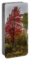 Portable Battery Charger featuring the photograph Fall Maple by Paul Freidlund