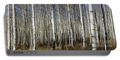 Fall Quaking Aspens Panorama Portable Battery Charger