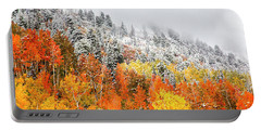 Fall To Winter Canvas Print, Photographic Print, Art Print, Framed Print, Greeting Card, Iphone Case Portable Battery Charger
