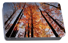 Portable Battery Charger featuring the photograph Fall Trees Sky by Meta Gatschenberger