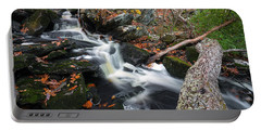 Fallen In Danforth Falls Portable Battery Charger