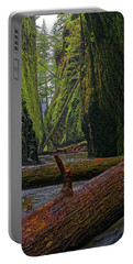 Portable Battery Charger featuring the photograph Fallen by Jonathan Davison