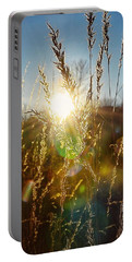 Portable Battery Charger featuring the photograph Fallen Rays by Nikki McInnes