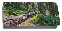 Fallen Tree- Portable Battery Charger