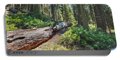Portable Battery Charger featuring the photograph Fallen Tree- by JD Mims