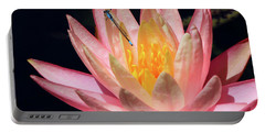 Familiar Bluet Damselfly And Lotus 2 Portable Battery Charger