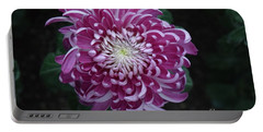 Fancy Chrysanthemum In Pink Portable Battery Charger