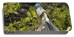 Fanning Scrub Jay Portable Battery Charger