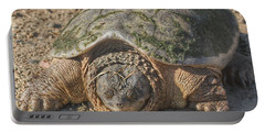 1013 - Fargo Road Turtle Portable Battery Charger