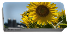 Farm Sunshine Portable Battery Charger
