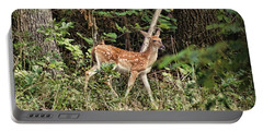 Fawn In The Woods Portable Battery Charger