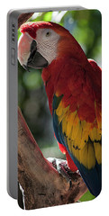 Feathered Rainbow Portable Battery Charger