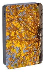 Portable Battery Charger featuring the photograph Feathery Fan Of Leaves by Christina Verdgeline