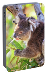 Portable Battery Charger featuring the photograph Feed Me, Yanchep National Park by Dave Catley