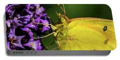 Portable Battery Charger featuring the photograph Feeding Butterfly by Jay Stockhaus