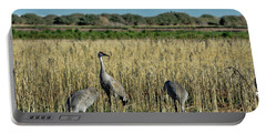 Feeding Greater Sandhill Cranes Portable Battery Charger
