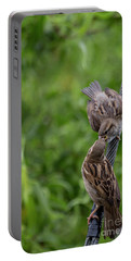 Portable Battery Charger featuring the photograph Feeding Time by Brian Roscorla