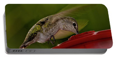 Portable Battery Charger featuring the photograph Female Anna's Hummingbird H40 by Mark Myhaver