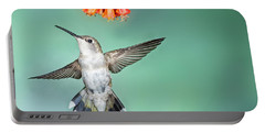 Female Black-chinned Hummingbird Portable Battery Charger
