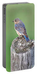Female Blue Bird Portable Battery Charger