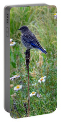 Female Bluebird Portable Battery Charger