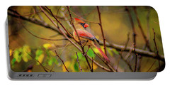 Female Cardinal #1 Portable Battery Charger
