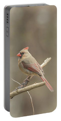 Female Cardinal Portable Battery Charger