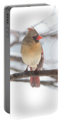 Female Cardinal In Snow Portable Battery Charger