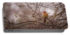 Portable Battery Charger featuring the photograph Female Cardinal In Spring 2017 by Terry DeLuco