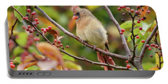 Portable Battery Charger featuring the photograph Female Cardinal In The Berries by Kerri Farley