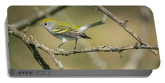 Female Chestnut-sided Warbler Portable Battery Charger