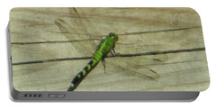 Female Eastern Pondhawk Dragonfly Portable Battery Charger
