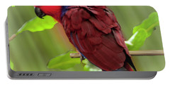 Female Electus Parrot  Portable Battery Charger