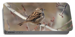 Female House Sparrow Portable Battery Charger