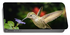 Female Hummingbird And A Small Blue Flower Left Angled View Portable Battery Charger