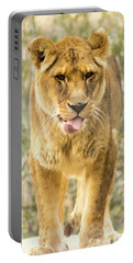 Female Lion Portable Battery Charger by Ayasha Loya