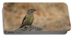 Female Red Crossbill Portable Battery Charger