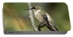 Female Ruby-throated Hummingbird On Branch Portable Battery Charger