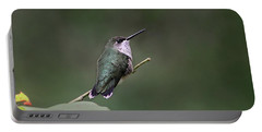 Hummingbird Portable Battery Charger by William Tanneberger