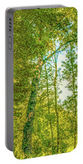 Portable Battery Charger featuring the photograph Female Tree.  by Leif Sohlman