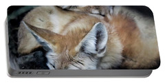 Fennec Foxes Portable Battery Charger