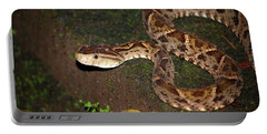 Portable Battery Charger featuring the photograph Fer-de-lance, Botherops Asper by Breck Bartholomew