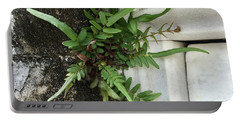 Fern Portable Battery Charger by Kim Nelson