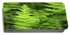 Ferns Stony Brook New York Portable Battery Charger