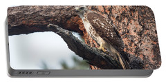 Ferruginous Hawk Portable Battery Charger