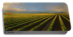 Portable Battery Charger featuring the photograph Fields Of Yellow by Mike Dawson
